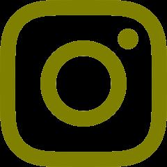 Instagram DaSViA